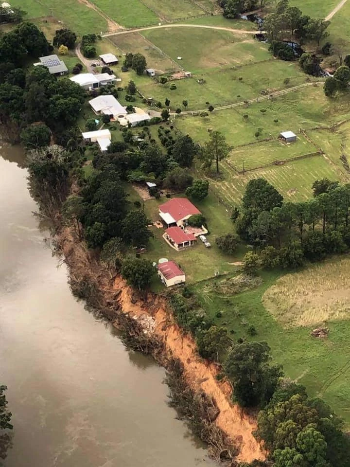 Tree Hazard, March 2021 Floods, Mid North Coast, New South Wales, Australia, feature story by Brilliant-Online