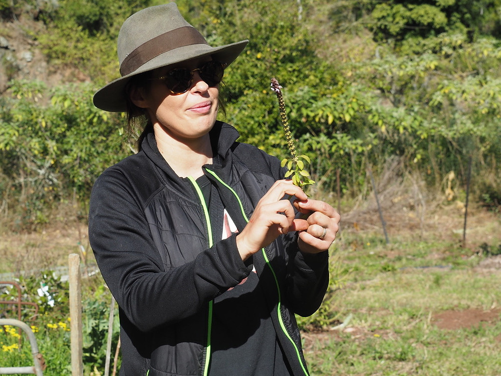 Cardia Forsyth, Grow Sustainability Living, Feature story by Brilliant-Onlin