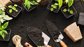 Getting your Garden Soil Ready with Greenbourne Nursery