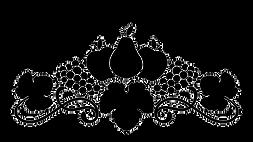 YFYV_Logo_BW_HR_edited_edited.png