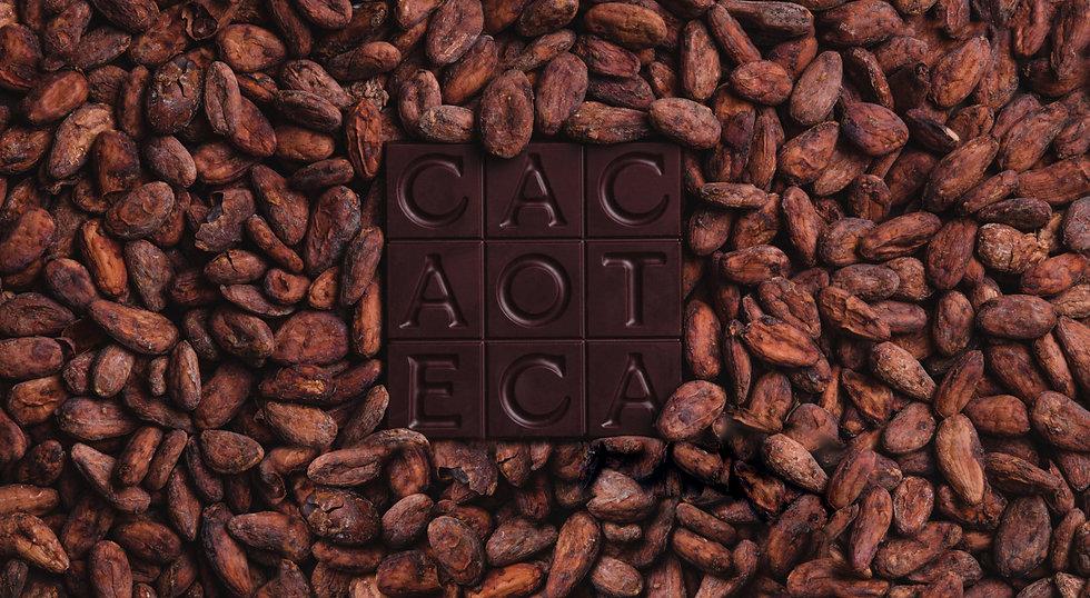CacaoTeca2.jpg