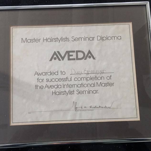Aveda Master Stylist Diploma