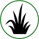 Grass_icon.png