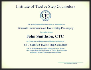 The 12 Step Consultant Certification, its Value and Need