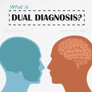 C18 Introduction to Dual Diagnosis Issues | 6 hour