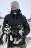 #ProjectPuppies: Snow Dogs
