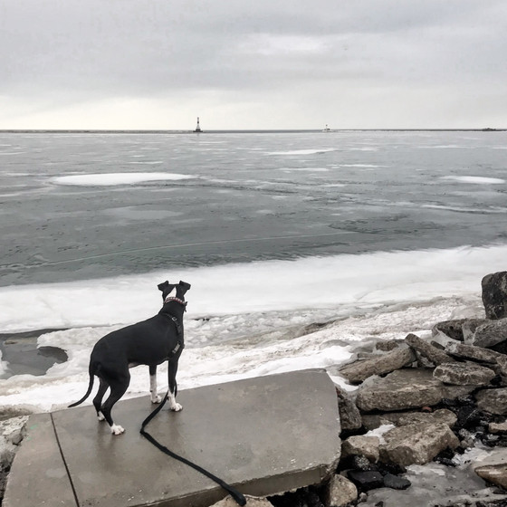 Travels With Lucy: Ashtabula