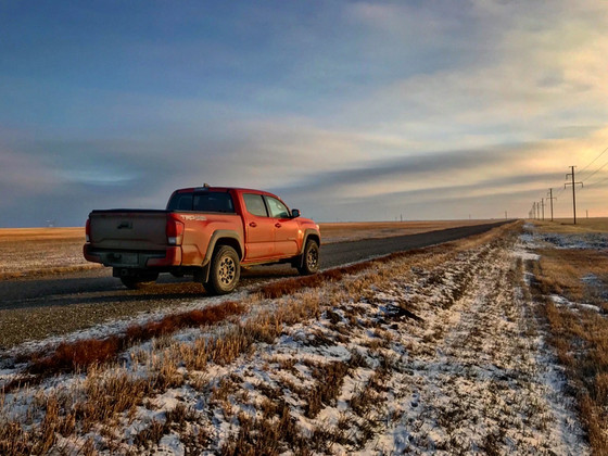 Travels With Lucy: Across The Plains