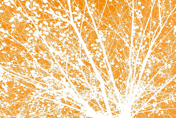 Fall Up One Orange