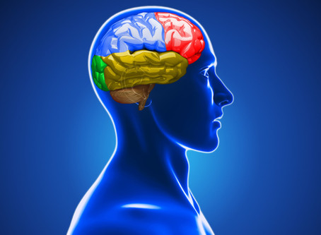 Concussions and Osteopathy