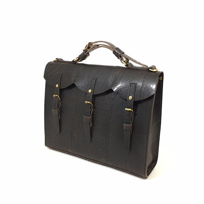 Triple handguns Briefcase