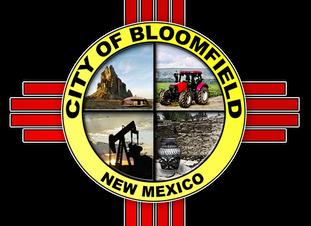 Bloomfield Municipal Elections