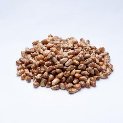Yağlı Mısır 250 gr.