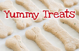 speciality treats
