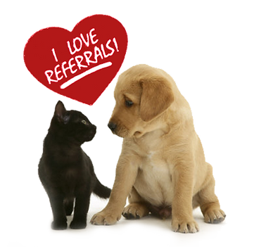 Central Ohio Professional Dog Walker and Pet Sitter referrals