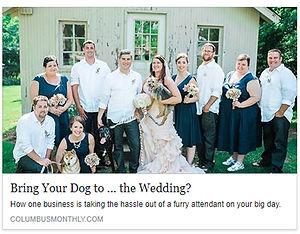 wedding sitter, pet sitter