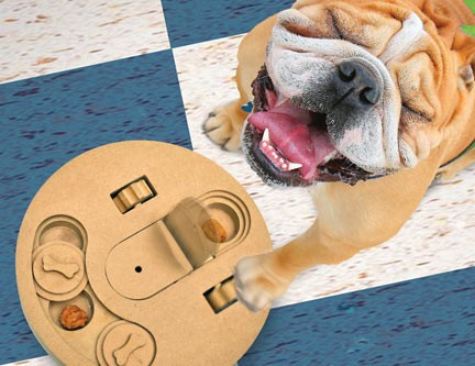 9 Ways to Keep Your Pup Busy When You're Away