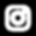 instagram logo-01.png