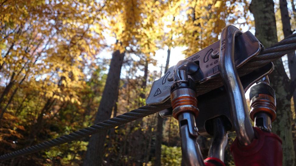 秋には紅葉の下で働き…
