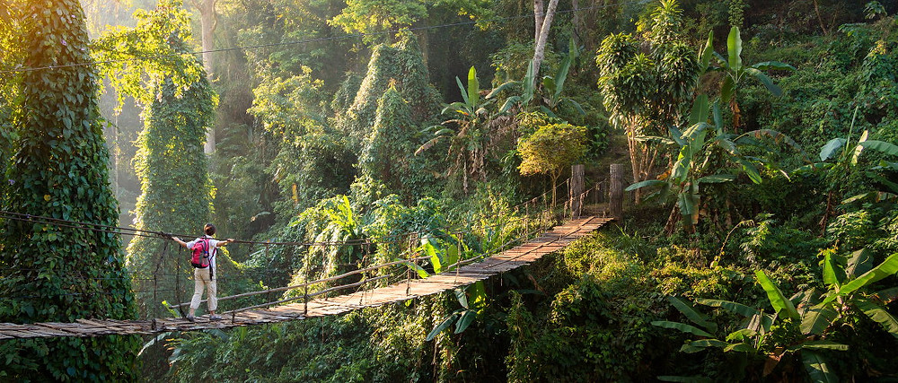 Adventures in Southeast Asia where nature's jungle gems await