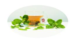 Mint Raw Pu'er Tea