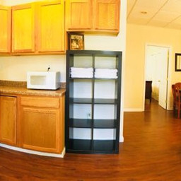 Apartment Suite. Living room and kitchen.