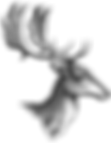 bohemia deer.PNG
