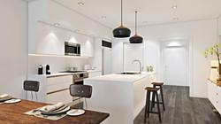 Buena Vista Villa Miami 3D Rendering