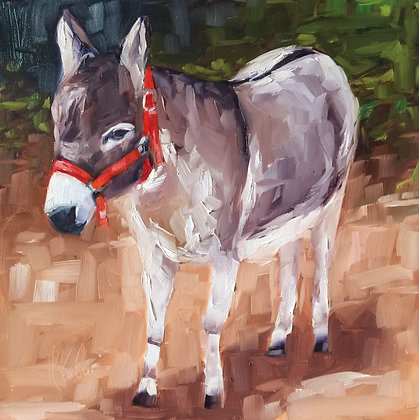 Donkey in Red