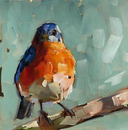 Bluebird on Gold Foil
