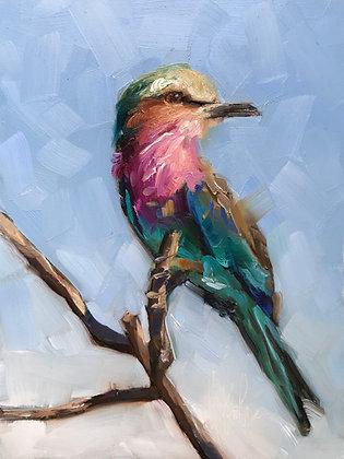 You're a Beautiful Bird