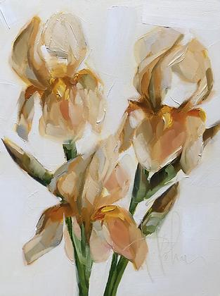 Golden Irises