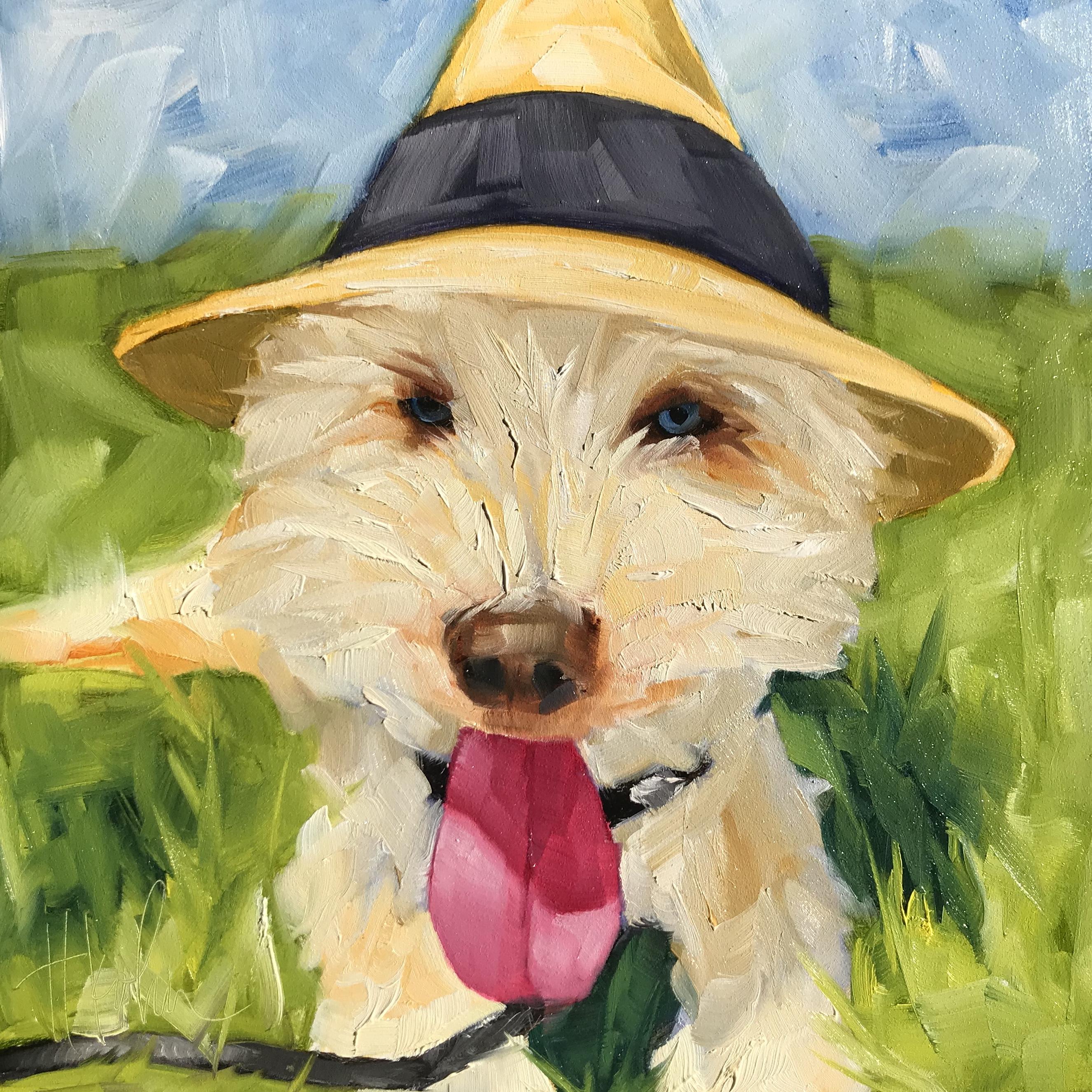 Dog-Finley
