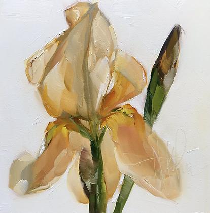 One Golden Iris