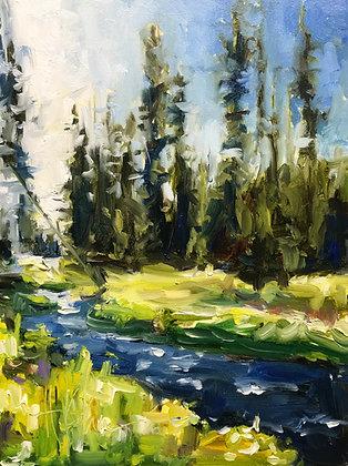 Yellowstone Study I