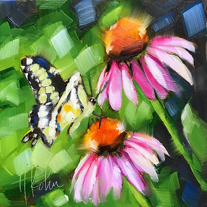 Swallowtail, Cone Flowers