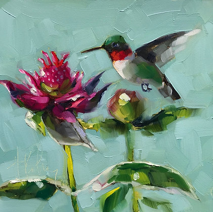 Hummingbird, Bee Balm