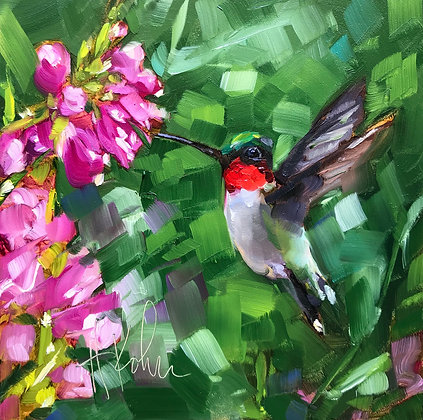Hummingbird Pausing