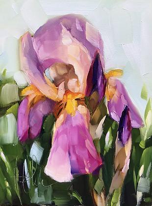 Dressed-Up Iris