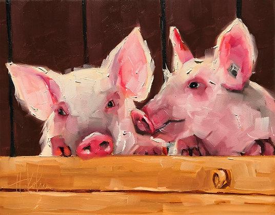 Farm Companions