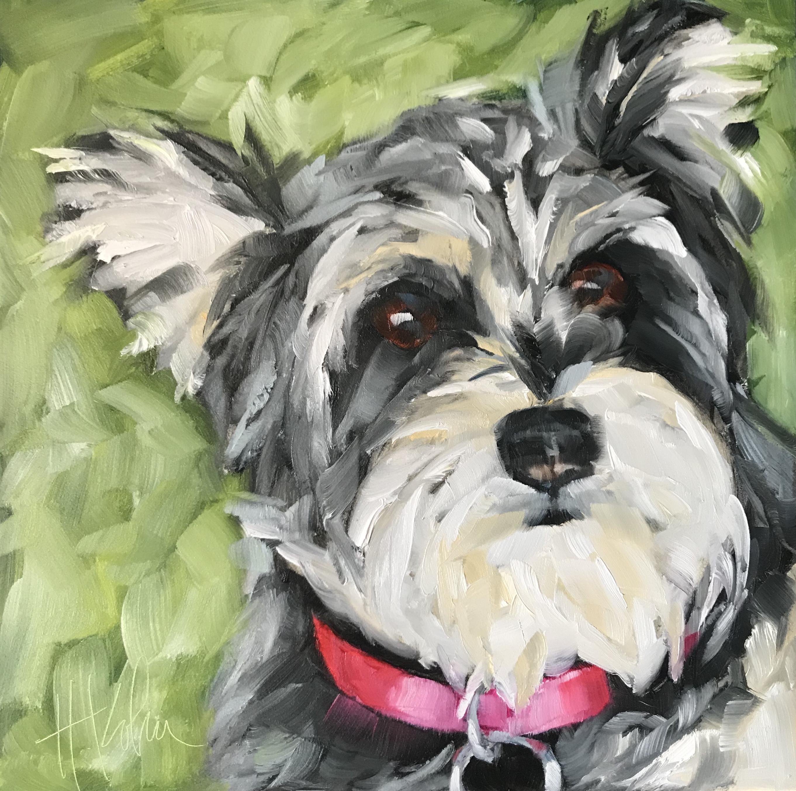Dog-Daisy