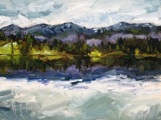 Trout Lake Study III