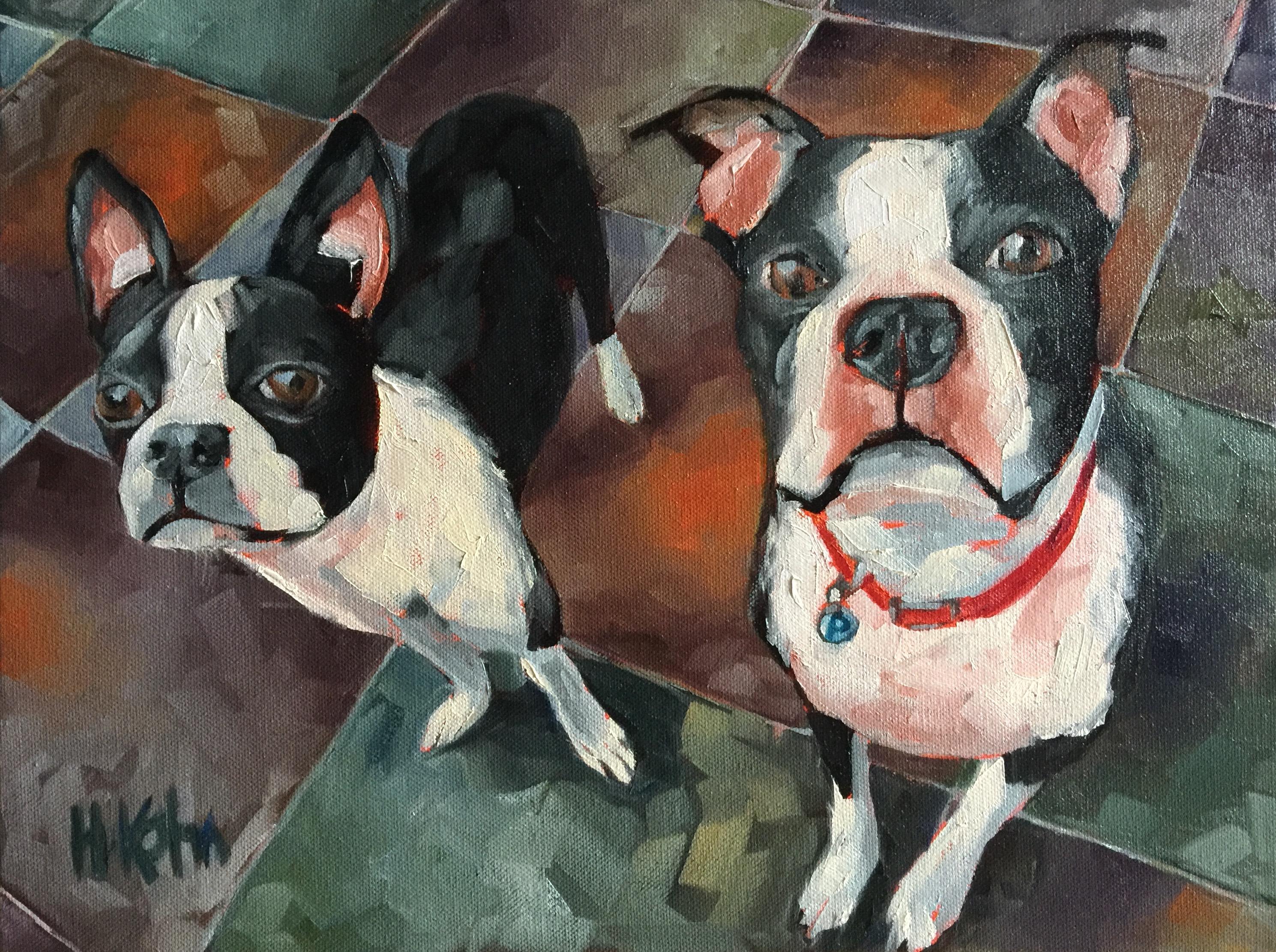 Dogs Boston Terriers