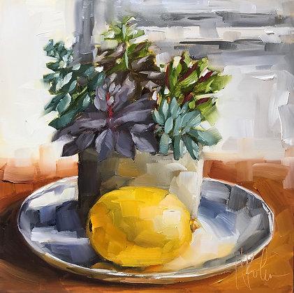 Succulents & Lemon