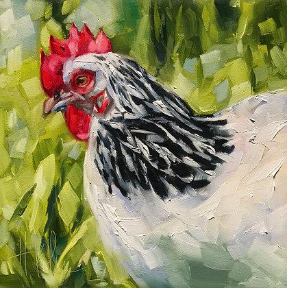 My Favorite Chicken