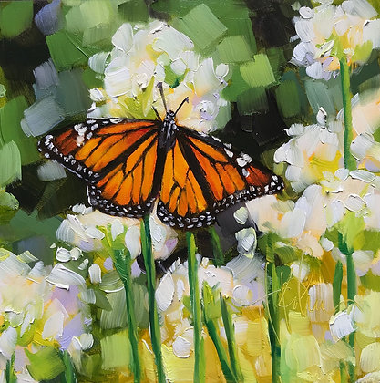 Monarch on Allium