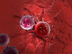 Por qué el cuerpo no destruye las células cancerosas