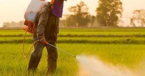 Es el pesticida más peligroso del que hayas oído hablar nunca, vinculado al cáncer, a daños cerebral