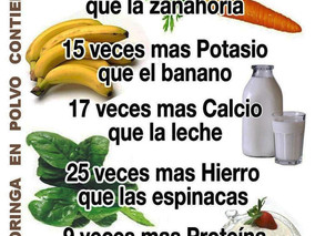 Los Múltiple Beneficios del Arbol                        Poderoso de  Moringa.