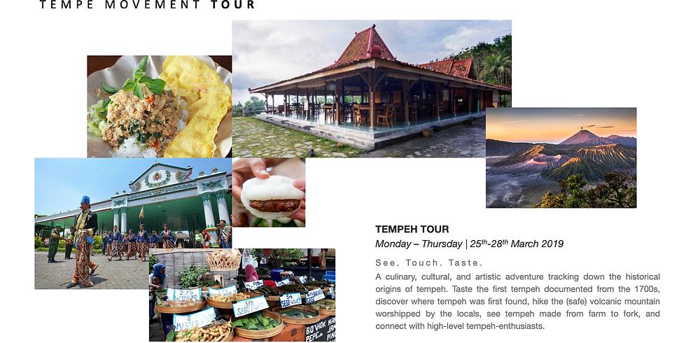 Tempe Movement Tour